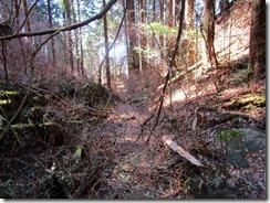 21荒れた登山道です、このルートを選択するのは一考の余地あり