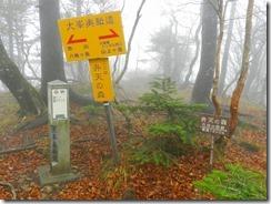 1-08弁天の森