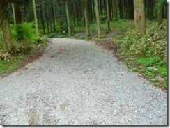 36林道入り口はロープが張って入れなくしています