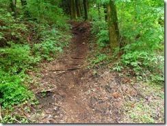 34林道終点に下りてきました、ここからショートカットを繰り返して下山口へ