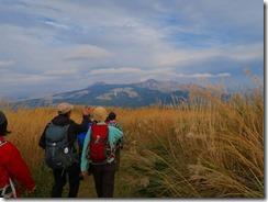 1-41ススキの登山道、前方は阿蘇五岳