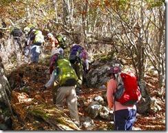 09石灰岩の山道
