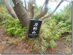16刀剣山、実際は展望台です