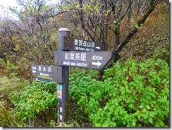 12平成新道分岐、普賢岳山頂はすぐです