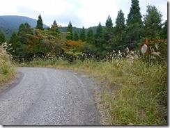 34約4kmの林道歩きです。林道がきれいになっています