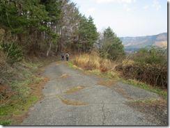 37舗装林道を下ります