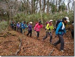 2-23落ち葉のクッションで快適な登山道