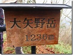 2-11大矢野岳到着