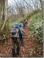 2-32雑木林とスズタケの登山道、最後の上りです