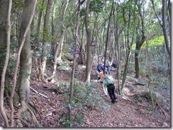 11神社からの登山道