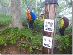 3-13 綺麗な樹林帯を歩きます