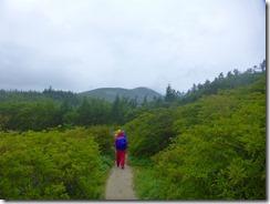 3-08歩きやすい登山道