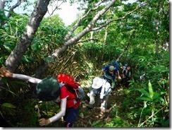 3-03荒島岳への苦しい登り