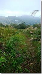 17経塚山方面を眺める