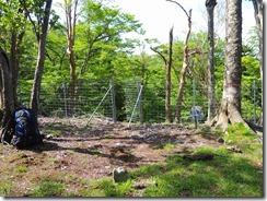 2-13水場には鹿避けネットを抜けます