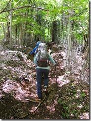 1-04九折への登山道
