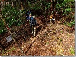 14上部林道登山口、再び登山道に入りますP1070966
