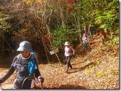 21上部林道登山口へ下山して来ましたP1100527