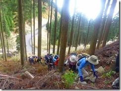 08植林帯の急登P1100505