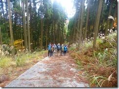 25舗装された林道を下りましたP1100534