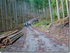 04林道も舗装されているP1070950