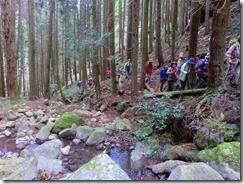 2-3植林地の間を登る