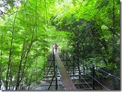 2-03吊橋を渡るIMG_1448