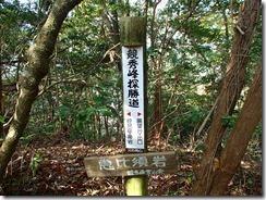 10恵比寿岩PB073474