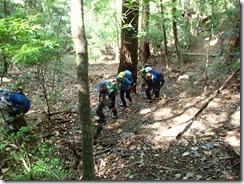 1-04自然林の谷筋を進みます