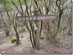 10田代原牧場への分岐
