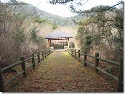13田代原牧場の脇の木道 (4)