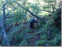 2-06檜山直下の上り