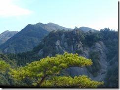 24真近ににみると岩峰の山、一峰方向