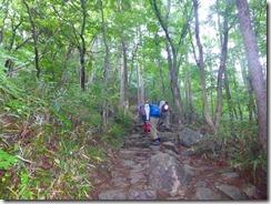 11石畳の登山道
