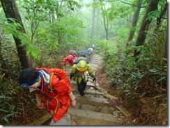 12階段状の登山道
