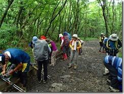 03広い登山道