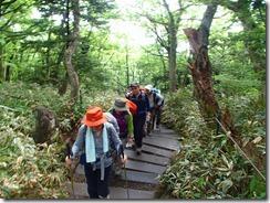 07整備された登山道