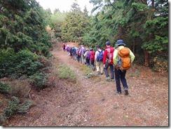 27林道歩き