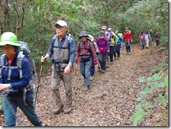 07整備された広い登山道