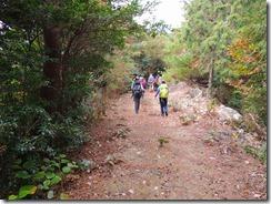 21登山道は何回も林道に合流します