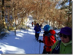 04穏やかな登山道を進みます