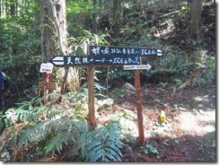 2-28姥ヶ嶽へ下山します