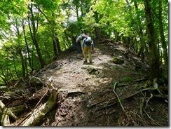 11稜線を登っていきます