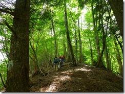 12ブナなど自然林の中を歩きます