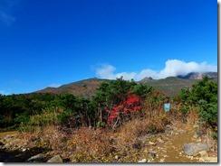 04紅葉を見ながら山頂を目指します。丸いのが安達太良山頂、乳首山とも言われています
