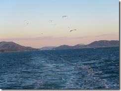 53小豆島を離れますIMG_2257