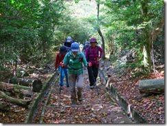 34星ケ城への登山道IMG_2080