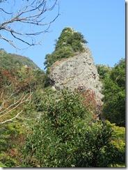 28法螺貝岩IMG_1864