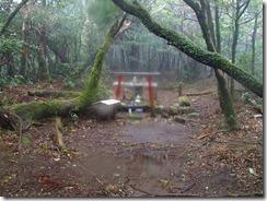 2-10稲尾岳山頂到着