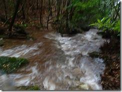 2-03登山道は水があふれています、普通は登山中止ですが午後雨が止む、一時的なもの、濡れることを我慢すれば危険がない・・プロガイドの判断で進む